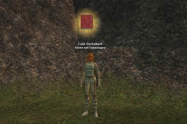 EverQuest 2 - Ausbilderin Calla Dachsfluch