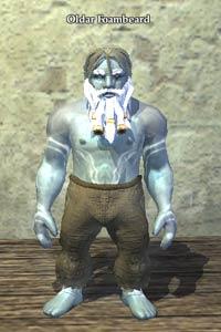 EverQuest 2 - Brautag: Oldar Schaumbart